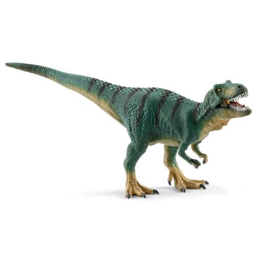Tyrannosaurus Rex Juvenile