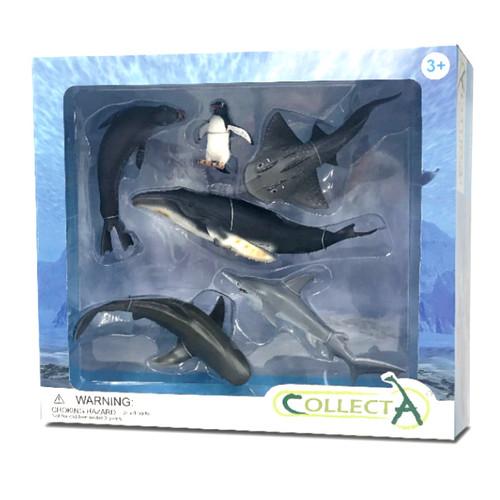 Sea Life Gift Set 6pc