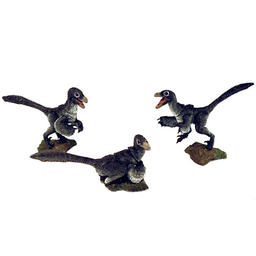 Nestlings 3 Pack Black