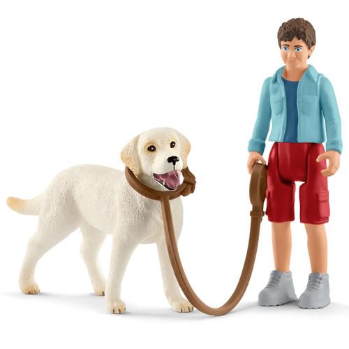 Walking with Labrador Retriever