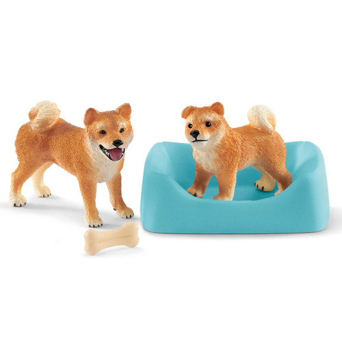 Shiba Inu Mother and Puppy