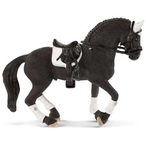 Friesian Stallion Riding Tournament