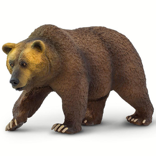 Grizzly Bear Jumbo