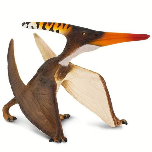 Pteranodon 2019