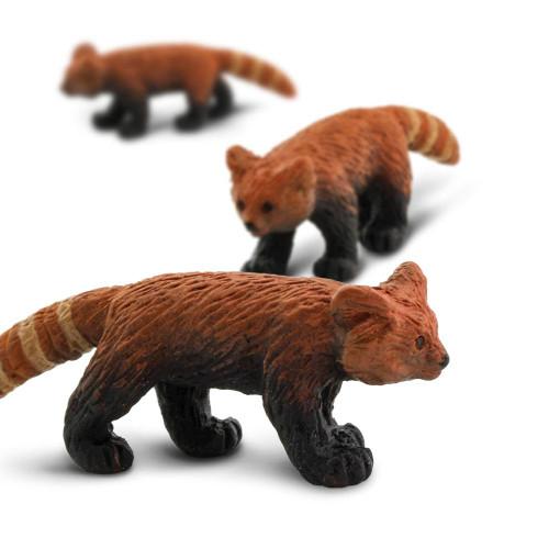 Mini Red Pandas
