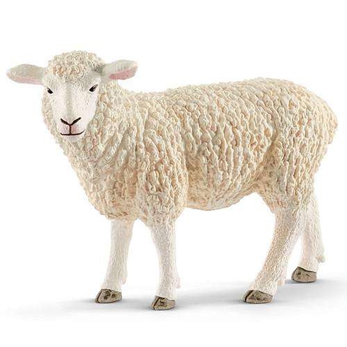 Sheep 2019