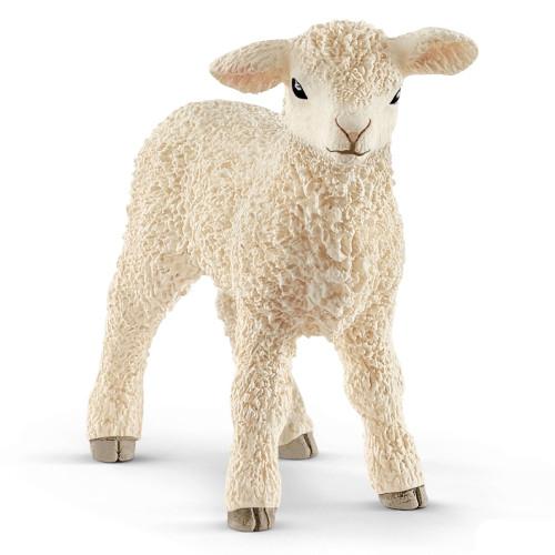 Lamb 2019