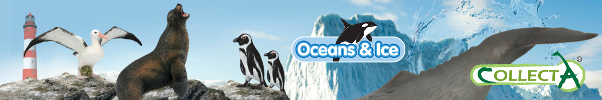 collecta-ocean-and-ice-banner.jpg
