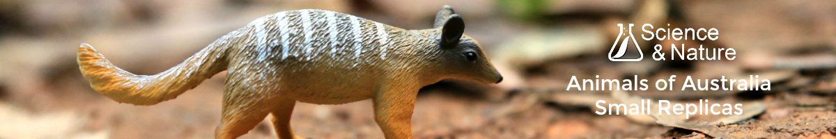 science-and-nature-animals-of-australia-small-banner-new-logo.jpg