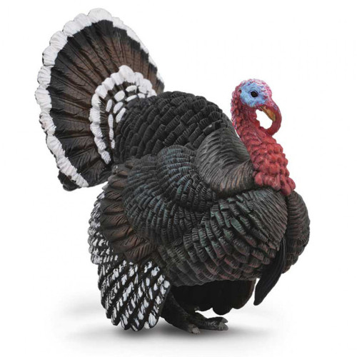 New Country Mini >> CollectA Turkey 88762 | Free Shipping