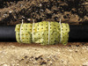 "Biobarrier Root Control Fabric 39"" x 21'"