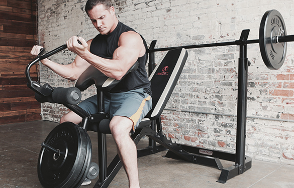 model using preacher curl attachment on md-879 weight bench