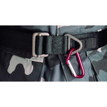 ENTRY/EXTRACTION BELT