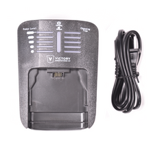 VP10 Professional 16.8V Charger