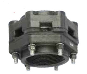 Banjo Poly Bolted Bottom Drain Tank Flange - 1 in. x 1 in. Threaded EPDM Flange