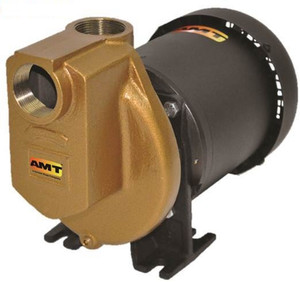 AMT 389297 Bronze Self-Priming Centrifugal Chemical Pump