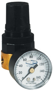 Dixon Wilkerson 1/4 in. Miniature Water Regulator With Gauge - 14 SCFM