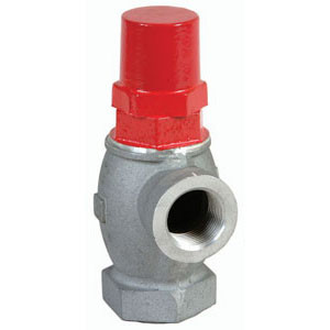 OPW 199ASV Anti Siphon Valve 1 in. - 5 ft. To 10 ft.