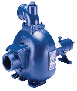Gorman-Rupp 80 Series Pumps - 4 in. - 1 1/4 in. - 74 - 700