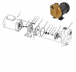 "AMT/Gorman Rupp 389 Series 1 1/2"" Chemical Pump Parts"