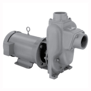 MP Pumps PETROLMAXX Petroleum 8 Self Priming Centrifugal Pump
