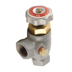 Emerson Fisher Type N350 3/4 in. FNPT Economy Angle Valve