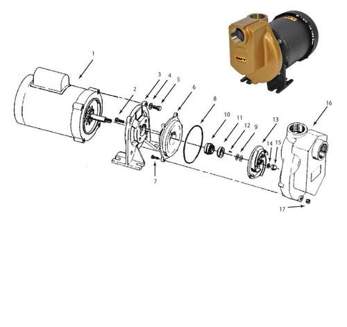 "AMT Shaft Seal (Viton) for 389 Series 1 1/2"" Chemical Pumps - Shaft Seal - Viton - 10 & 11"