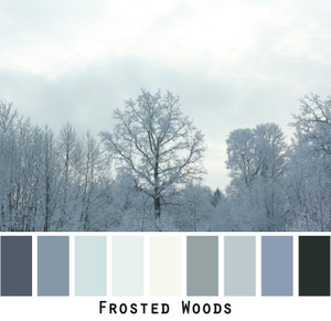 Frosted Woods - silver gray, warm grey snow covered trees, teal grey, colors for green grey brown eyes, grey black hair brunette, redhead, photo by Inese Iris Liepina, Wrapture by Inese