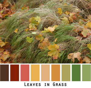 Leaves in Grass - chocolate brown maroon red pumpkin orange green gold pink salmon straw green lime olive colored fallen leaves colors for green eyes, brown eyes, brunette - photo by Inese Iris Liepina, Wrapture by Inese
