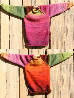 Echinacea pink orange lime green brown kids raglan pullover sweater Wrapture by Inese
