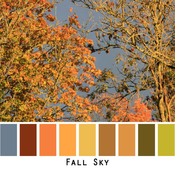 Fall Sky - reddish brown cinnamon peach mango gold tobacco olive celery the colors of autumn for blue eyes, green eyes, brown eyes, brunette, redhead, black hair - photo by Inese Iris Liepina, Wrapture by Inese
