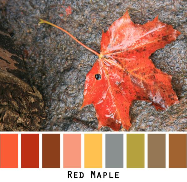 Red Maple - red orange brown  maple leafs for green eyes, brown eyes, brunette, black hair, photo by Inese Iris Liepina, Wrapture by Inese