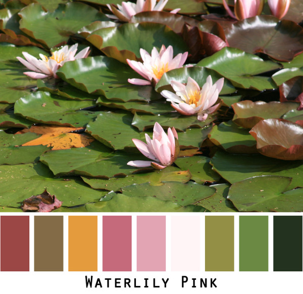 Waterlily Pink - pink gold rose maroon tan green blackcolors for green eyes, brown eyes,  brunette, black hair redhead photo by Inese Iris Liepina, Wrapture by Inese