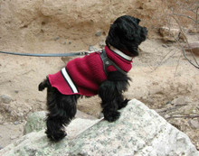 ChokeFree™ NON-METALLIC Leather Shoulder Collars (Harness)