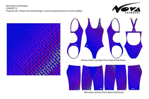 Design Concept #13