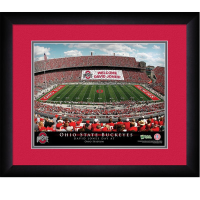 Ohio State Buckeyes Personalized Stadium Print 5495 Shower Curtain