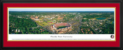FSU Seminoles Panoramic Photo Deluxe Matted Frame - Aerial View