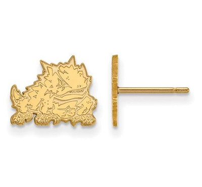 TCU 14k Yellow Gold Extra Small Post Earrings