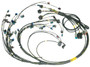 LSX premium engine wiring harness for Emtron KV8 ECU