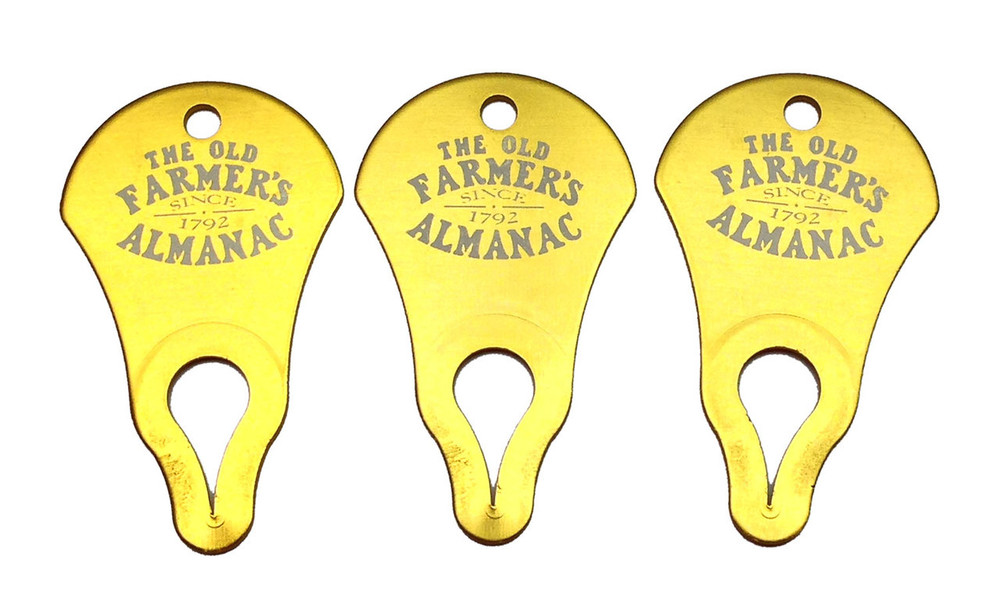 Tick Key Tick Remover Tool (3-Pack)