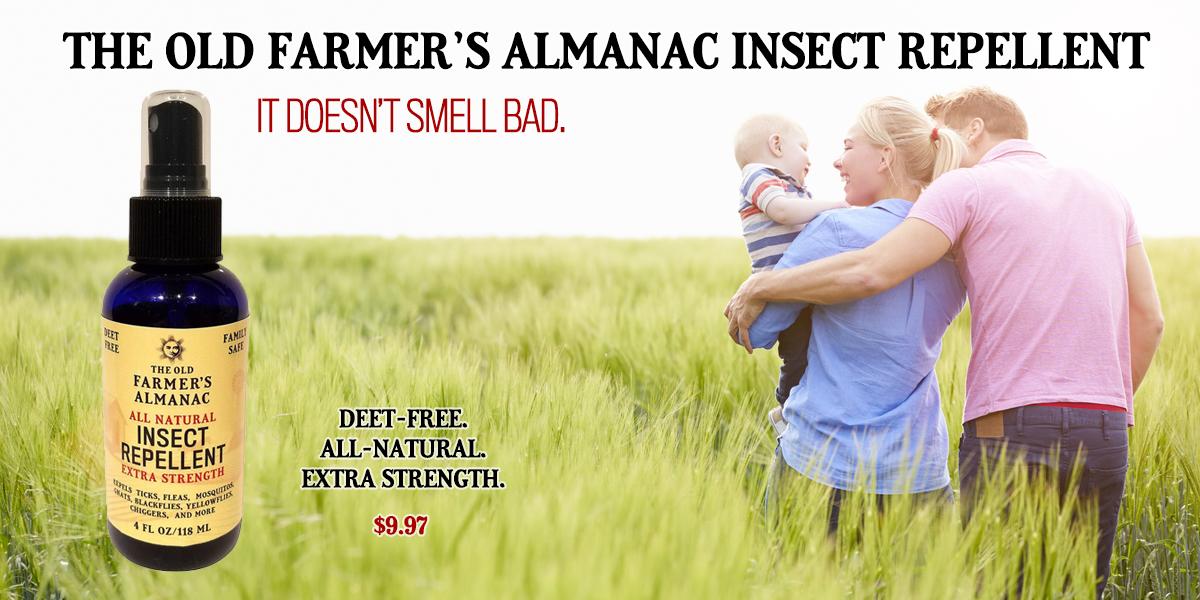 Deet-Free All-Natural Bug Repellent