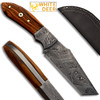 White Deer  Custom Made Damascus Steel Skinner Knife w/ Olive Wood Handle