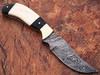 WHITE DEER Clip Point Damascus Steel Hunting Knife Buffalo Horn Handle