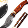 Damascus Steel Skinner Knife w/ Walnut Wood And Stage Handle