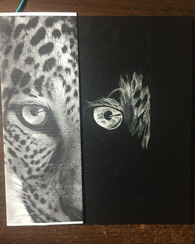Scratchboard Drawing Workshops