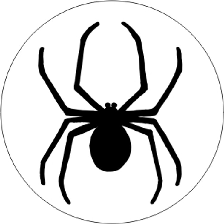 INSECTS - SPIDER 3
