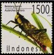 baami-stamp.jpg