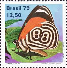 Image result for Diaethria clymena stamp