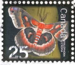 Image result for Hyalophora cecropia stamp