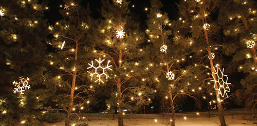 Rope Light Snowflake 120v elegant rope light snowflake decorative motif hsm snowfb by american lighting 120v elegant rope light snowflake decorative motif audiocablefo